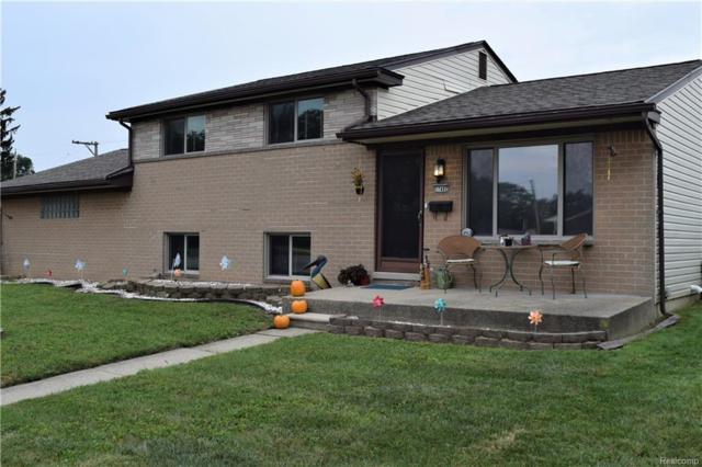 17492 Hans Drive, Fraser, MI 48026 (#218091957) :: Duneske Real Estate Advisors