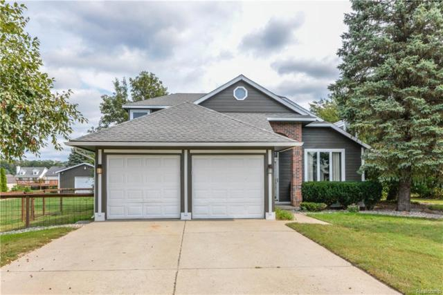 11751 Dunlavy Lane, Hamburg Twp, MI 48189 (#218092174) :: The Buckley Jolley Real Estate Team