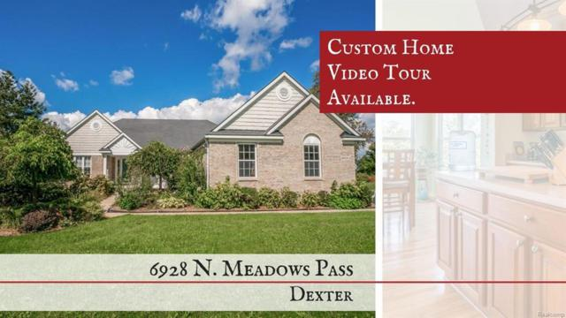 6928 N Meadows Pass, Webster, MI 48130 (#543260376) :: RE/MAX Vision