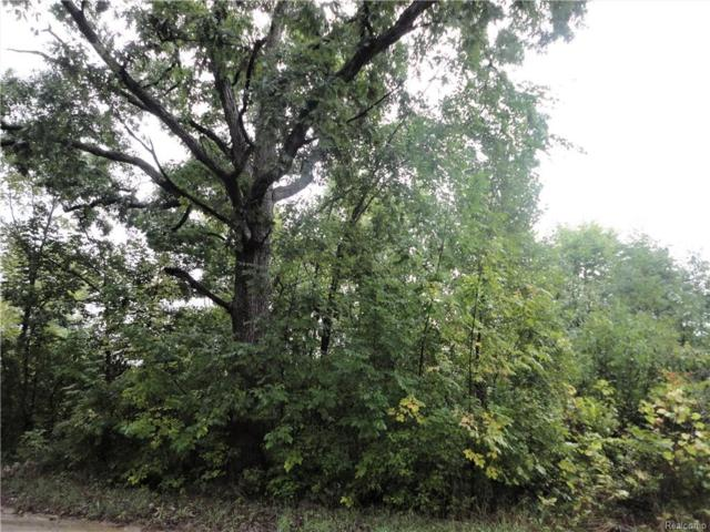 Vacant Holtforth Road, Tyrone Twp, MI 48430 (#218092391) :: The Buckley Jolley Real Estate Team
