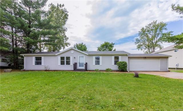 16132 Softwater Lake Drive, Argentine Twp, MI 48451 (#218092396) :: RE/MAX Classic
