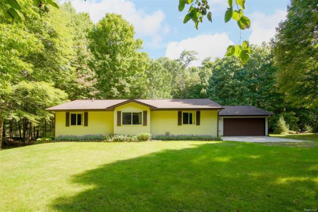 11319 Mcgregor, Hamburg Twp, MI 48169 (#543260354) :: The Buckley Jolley Real Estate Team