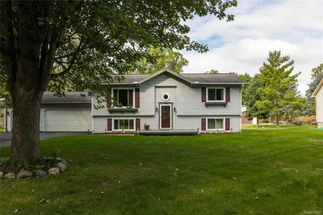 770 S Hagadorn Street, South Lyon, MI 48178 (#218092467) :: RE/MAX Classic
