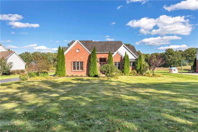 1434 Courtney Court, Hartland Twp, MI 48353 (#218092597) :: The Buckley Jolley Real Estate Team