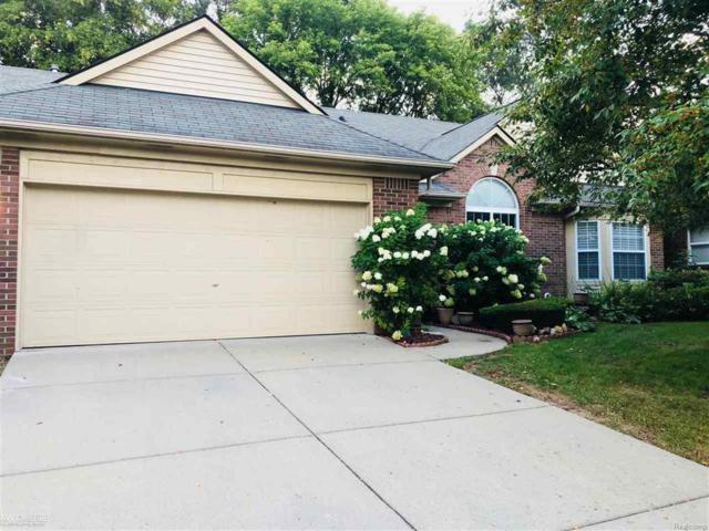 45305 Manor Dr, Shelby Twp, MI 48317 (#58031360693) :: Duneske Real Estate Advisors