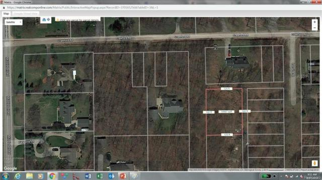 0000 Central Street, Huron Twp, MI 48164 (#218092896) :: RE/MAX Classic