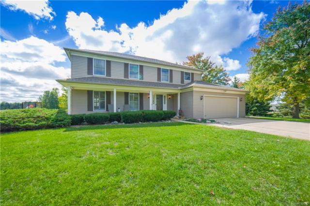8414 Horton Road, Atlas Twp, MI 48438 (#218093851) :: The Buckley Jolley Real Estate Team