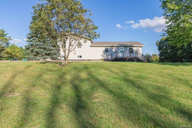 4131 Julie Kim Lane, Hadley Twp, MI 48438 (#218094221) :: The Buckley Jolley Real Estate Team