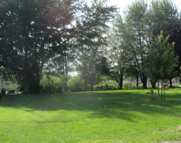 Tomahawk Trl, Kinderhook Twp, MI 49036 (#62018048065) :: Duneske Real Estate Advisors