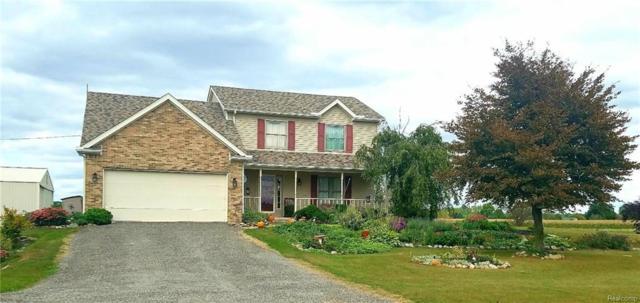 1360 Hubbard Road, La Salle Twp, MI 48161 (#218094950) :: The Buckley Jolley Real Estate Team