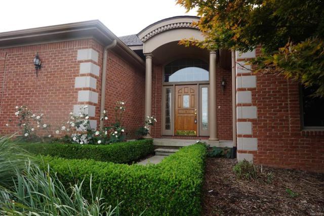 4175 Upper Glade Court, Scio Twp, MI 48103 (#543260453) :: The Buckley Jolley Real Estate Team
