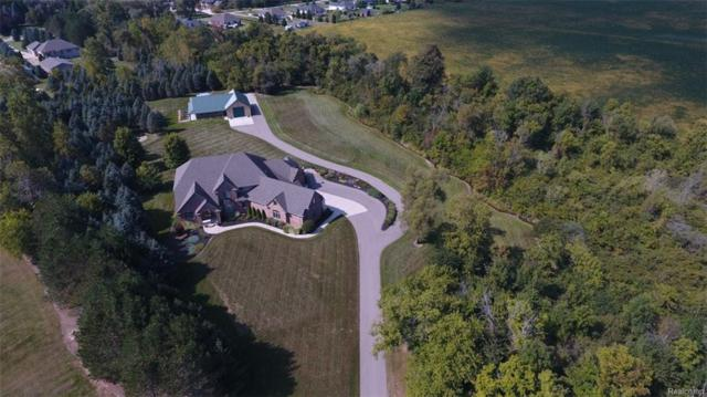 73443 Hidden Creek Lane, Bruce Twp, MI 48065 (#218095585) :: The Mulvihill Group