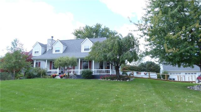 5353 Knoll Road, Mussey Twp, MI 48014 (#218095872) :: The Buckley Jolley Real Estate Team