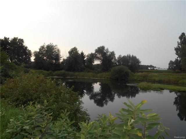 4840 Lake Pleasant Road, North Branch Twp, MI 48461 (#218096416) :: RE/MAX Nexus