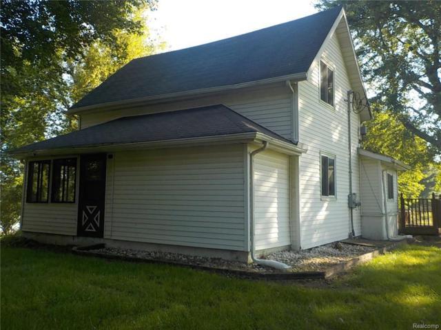 5054 Skelton Road, Deerfield Twp, MI 48421 (#218096783) :: The Buckley Jolley Real Estate Team