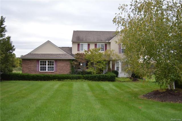 2817 Wheat Valley Drive, Marion Twp, MI 48843 (#218097338) :: The Buckley Jolley Real Estate Team