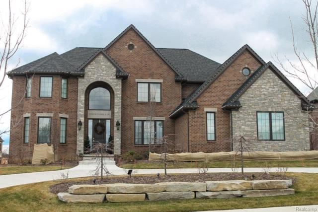 0135 Wildrose Court, Independence Twp, MI 48348 (#218097747) :: The Buckley Jolley Real Estate Team