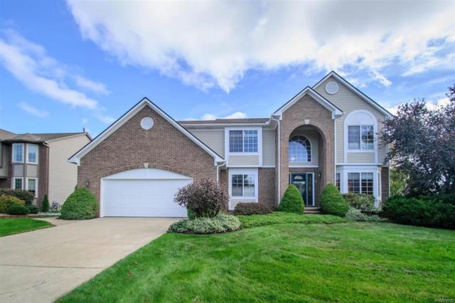 5862 Cedar Ridge Drive, Scio Twp, MI 48103 (#543260819) :: The Buckley Jolley Real Estate Team