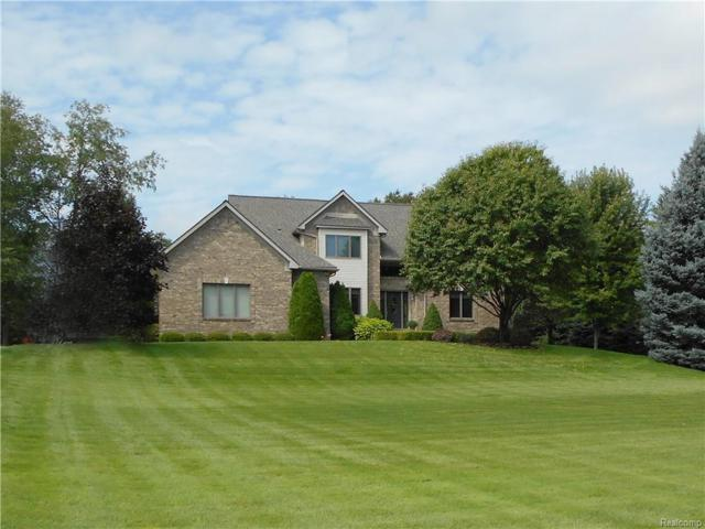 4685 Indianwood Court, Independence Twp, MI 48348 (#218098280) :: The Buckley Jolley Real Estate Team