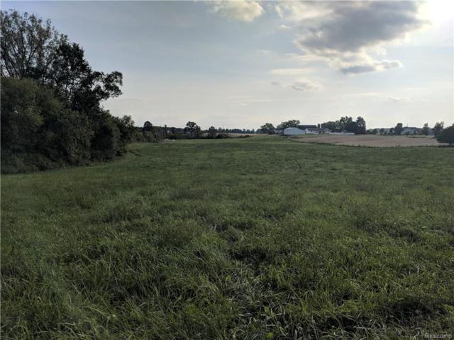 000 Clinton-Macon Road, Clinton Twp, MI 49236 (#218098706) :: The Buckley Jolley Real Estate Team