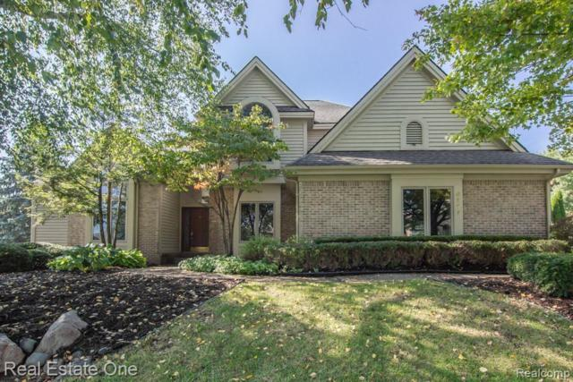 8117 Staghorn Trail, Independence Twp, MI 48348 (#218098843) :: RE/MAX Classic