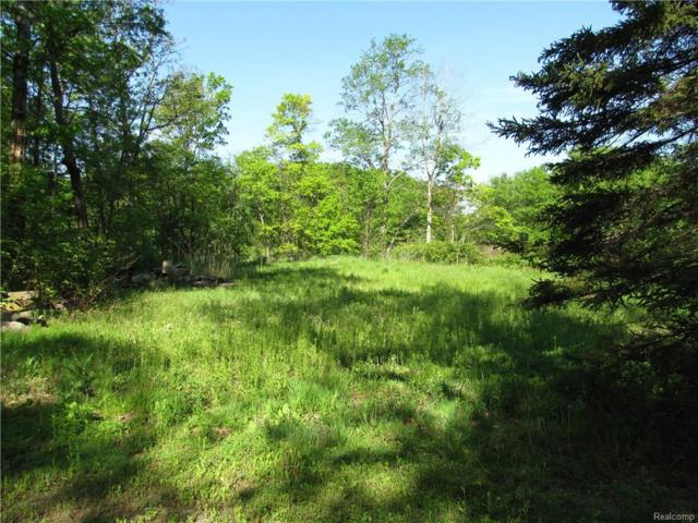 13106 Woodland Trail, Southfield Twp, MI 48350 (#218098845) :: The Buckley Jolley Real Estate Team
