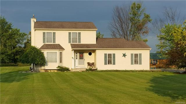 336 N Doran Road, Imlay Twp, MI 48444 (#218099879) :: The Mulvihill Group