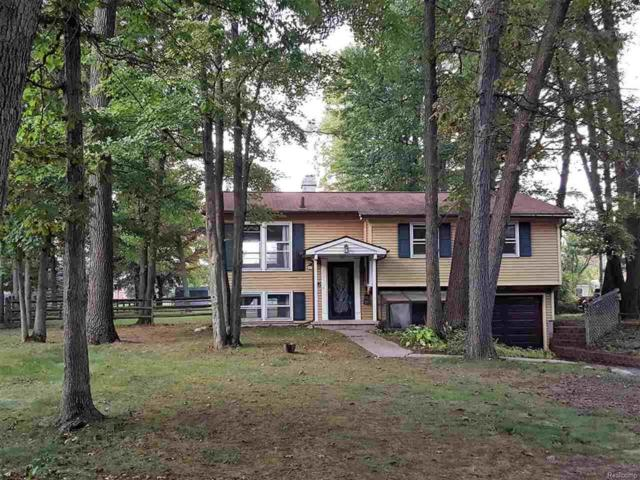 4956 Smith Rd, Whiteford Twp, MI 49267 (#57031362859) :: The Mulvihill Group