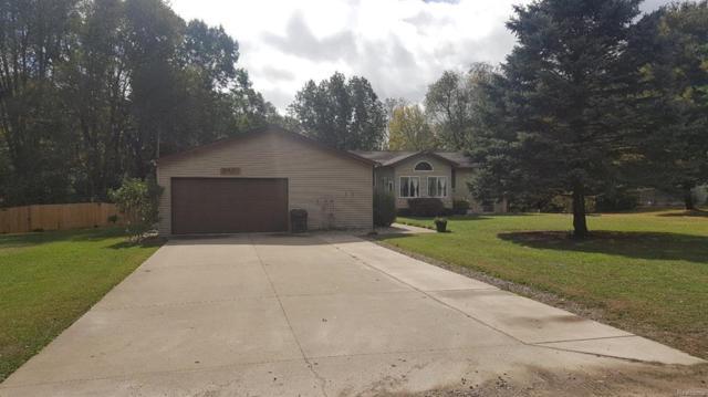 6501 Ellen Lane, Leoni Twp, MI 49201 (#543260987) :: The Buckley Jolley Real Estate Team