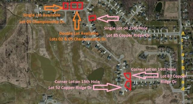 Lot 85 Copper Ridge Drive, Davison Twp, MI 48423 (#218101621) :: The Buckley Jolley Real Estate Team