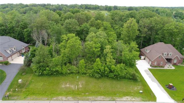 VAC Riverwalk Drive, Tyrone Twp, MI 48430 (#218102195) :: RE/MAX Nexus