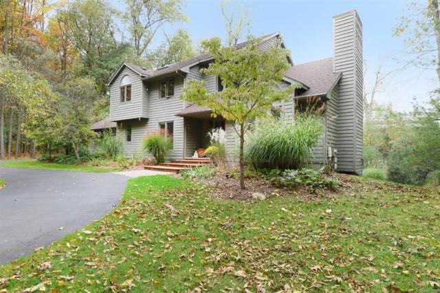 3354 Timberwood Lane, Scio Twp, MI 48103 (#543261071) :: The Buckley Jolley Real Estate Team