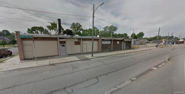 13701 W 8 Mile Road E, Detroit, MI 48235 (#218102315) :: RE/MAX Classic