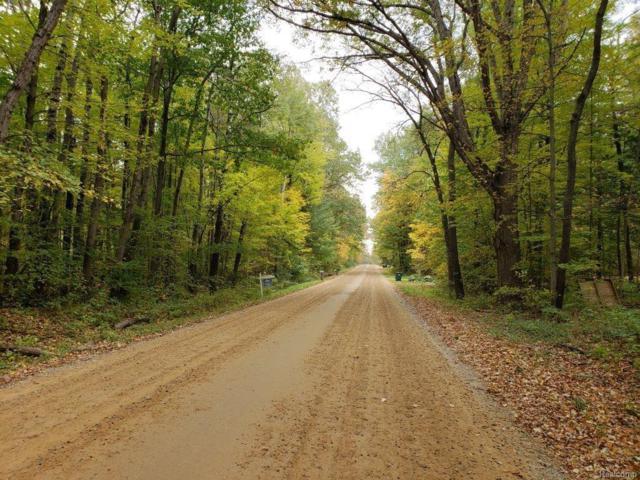 VL Flint River Road, Marathon Twp, MI 48446 (#218102521) :: RE/MAX Classic