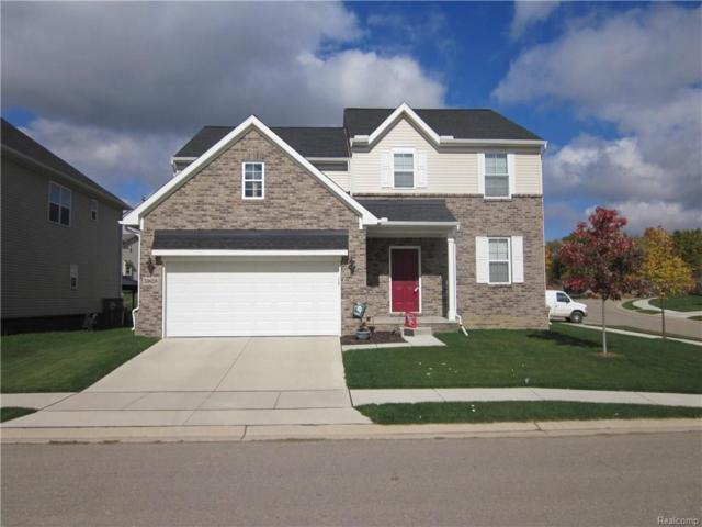 352 Crystal Crossing Drive, Marion Twp, MI 48843 (#218102628) :: The Buckley Jolley Real Estate Team