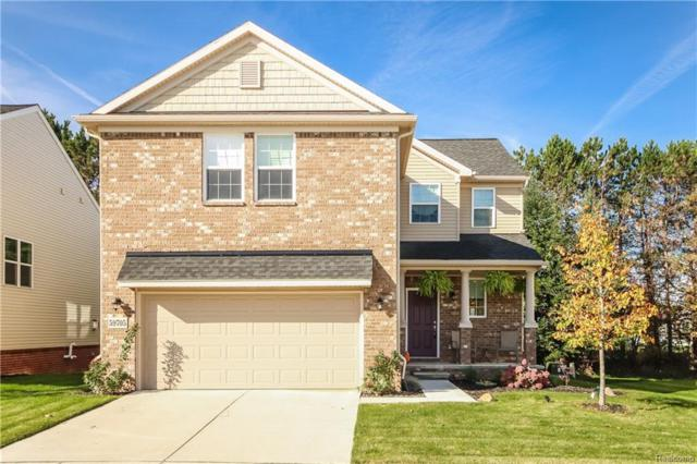 342 Crystal Crossing Drive, Marion Twp, MI 48843 (#218102661) :: The Buckley Jolley Real Estate Team