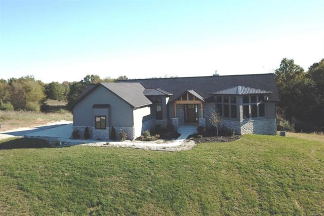 10485 Timberhill Road, Manchester Twp, MI 48158 (#543261113) :: The Buckley Jolley Real Estate Team