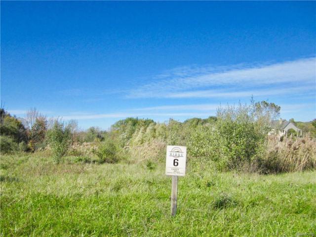 5334 Pebble Beach Drive, Metamora Twp, MI 48455 (#218103073) :: The Buckley Jolley Real Estate Team