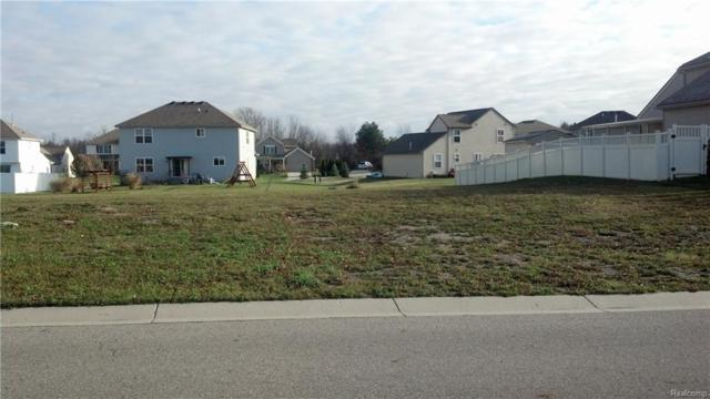 0000 Still Meadow Lane, Grand Blanc Twp, MI 48439 (#218103589) :: The Buckley Jolley Real Estate Team