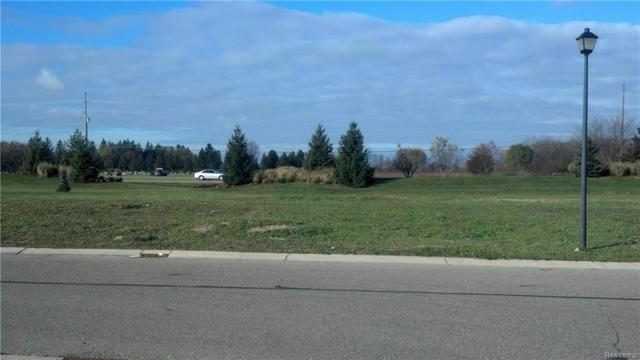 STILL MEADOW Still Meadow Road, Grand Blanc Twp, MI 48439 (#218103618) :: The Buckley Jolley Real Estate Team