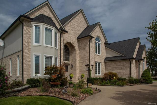 2481 Parsley Court, Sterling Heights, MI 48314 (#218103684) :: RE/MAX Classic