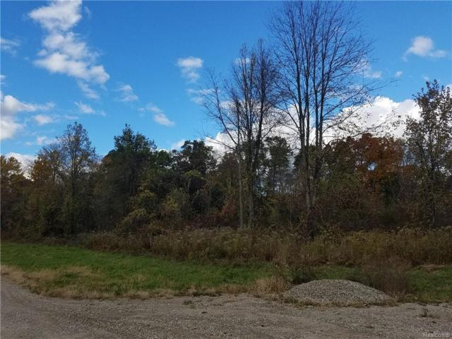 Parcel A Euler Road Road, Genoa Twp, MI 48114 (#218103833) :: The Mulvihill Group