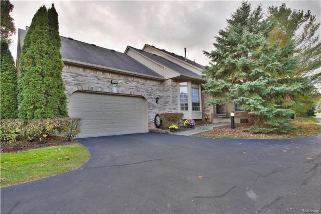1953 Clearwood Court, Shelby Twp, MI 48316 (#218103961) :: RE/MAX Classic