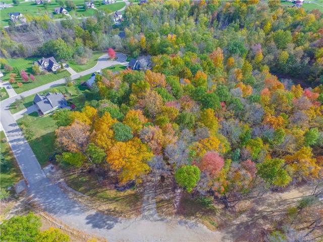 7200 Acadia Parcel B-1 Lane, White Lake Twp, MI 48383 (#218104719) :: Duneske Real Estate Advisors