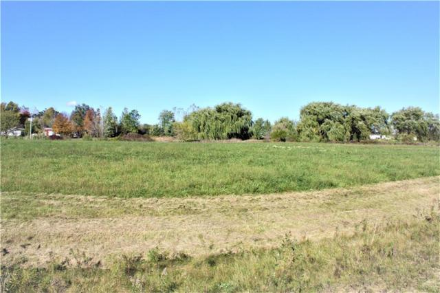Parcel 1 Imlay City Road, Mussey Twp, MI 48014 (#218105507) :: The Mulvihill Group