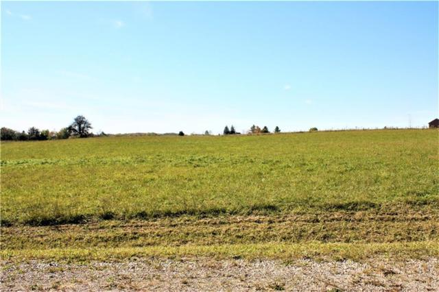 Parcel 3 Imlay City Road, Mussey Twp, MI 48014 (#218105541) :: The Buckley Jolley Real Estate Team