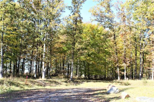 Parcel 6 Imlay City Road, Mussey Twp, MI 48014 (#218105576) :: The Mulvihill Group