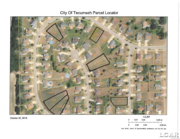 1702 Wind Dancer, Tecumseh, MI 49286 (#56031364228) :: Duneske Real Estate Advisors