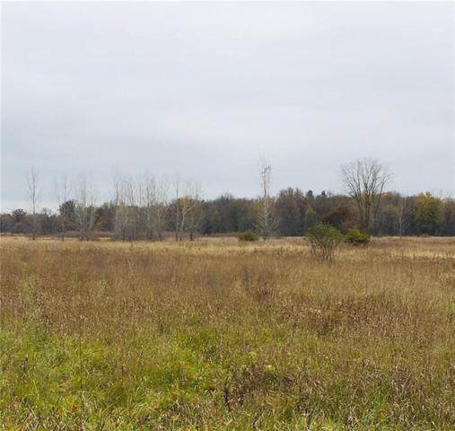 PARCEL A Sherwood Road, Conway Twp, MI 48836 (#218106746) :: RE/MAX Classic