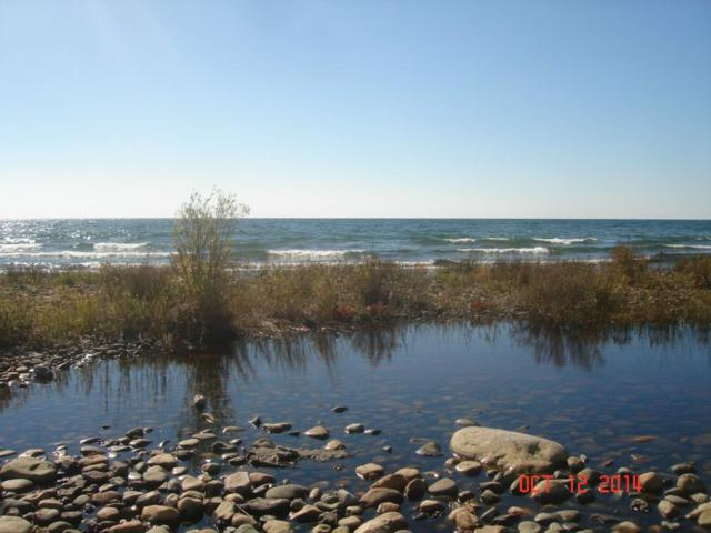 0000 E Bass Cove Rd Island, Drummond Twp, MI 49726 (#218107413) :: The Buckley Jolley Real Estate Team